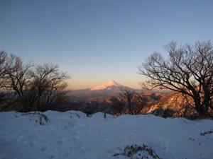 丹沢富士山.jpg